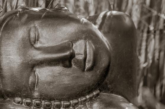 Asleep amongst the Bamboo