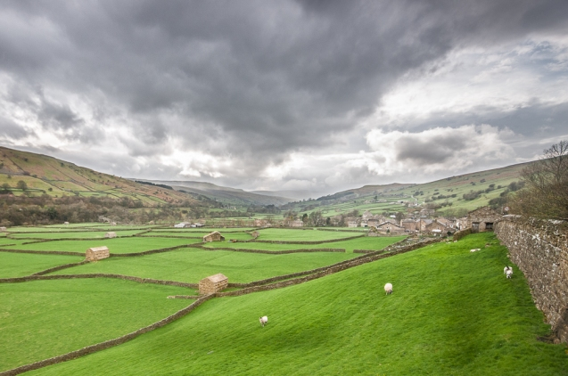 Swaledale field barns
