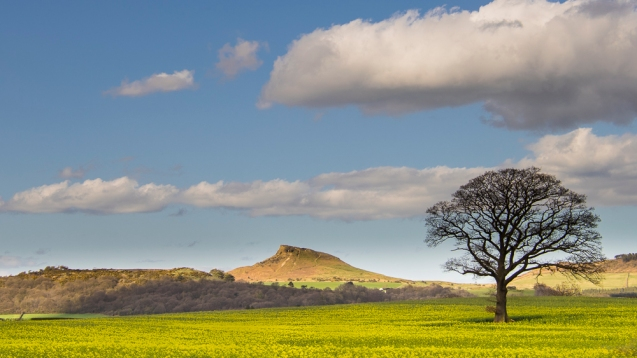 A view of Roseberry Topping.