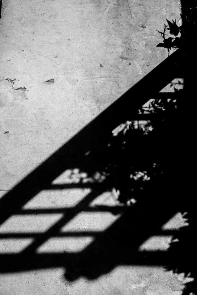shapes_shadows 1